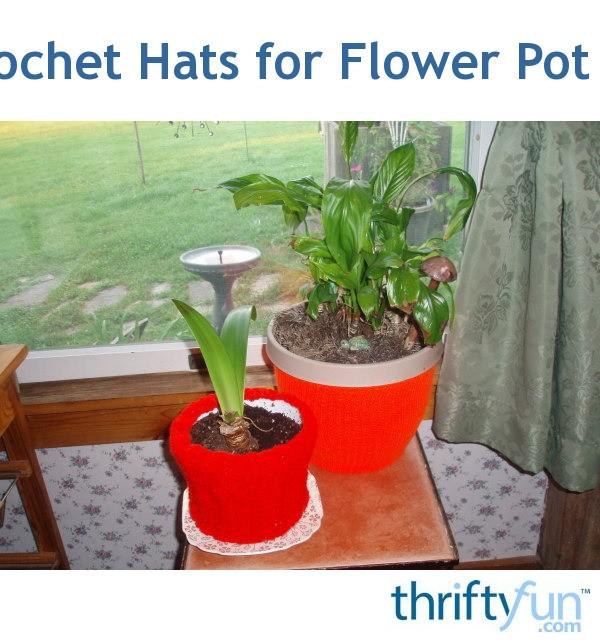 Decorating flower pots thriftyfun for Fancy flower pots