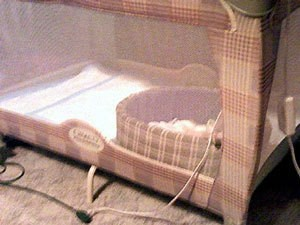Palypen with dog bed inside.