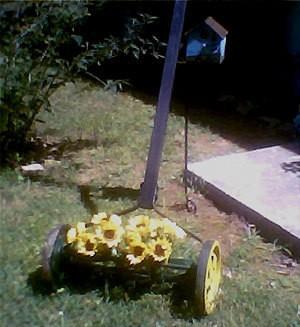 Old Timey Lawnmower Lawn Decoration Thriftyfun