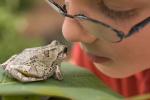 Boy Looking at a Toad