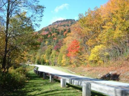 Scenic fall color photo.