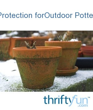 Winter Protection For Outdoor Potted Plants Thriftyfun