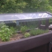 Salad Bar Made into Garden Bed