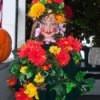 Little girl dressed as a flower garden.