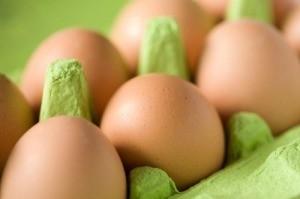 Testing Egg Freshness