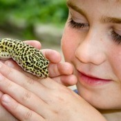 Boy Holding Lizard