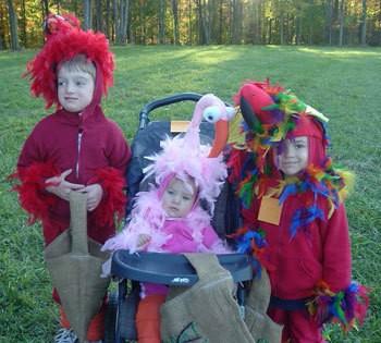 Cute Bird Halloween Costumes
