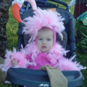 Flamingo costume.