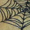 up close spiderweb