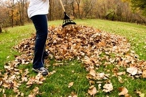 Raking Up Fall Leaves