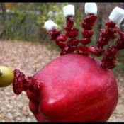 Cute Edible Apple Turkey