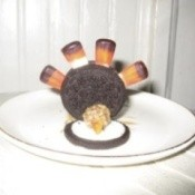 Edible Turkey