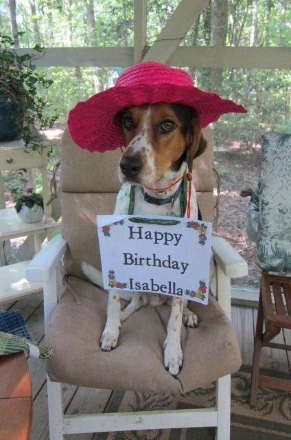Ava with birthday card around neck.