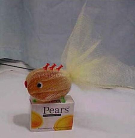 Pears soap fish.
