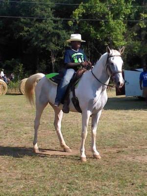 Boy on horse.