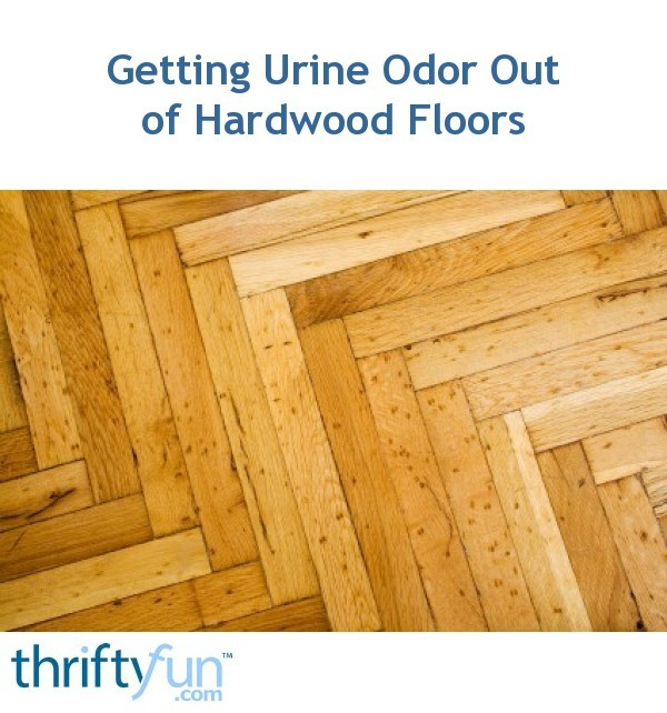 Cleaning Pet Urine Odor From Hardwood Floors ThriftyFun - Best dog urine odor remover for hardwood floors