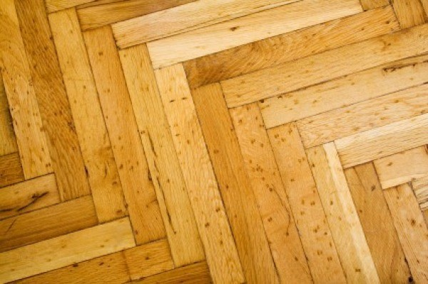 Cleaning Pet Urine Odor From Hardwood Floors ThriftyFun - How to eliminate dog urine odor from wood floors