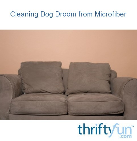 Stupendous Cleaning Dog Drool From Microfiber Thriftyfun Ibusinesslaw Wood Chair Design Ideas Ibusinesslaworg