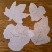 Four different leaf tracings.