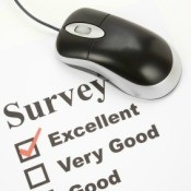 Computer Mouse and Survey