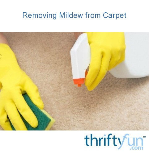 Removing Mildew From Carpet Thriftyfun