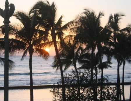 Sunset through palm trees at Sunset beach Hawaii.