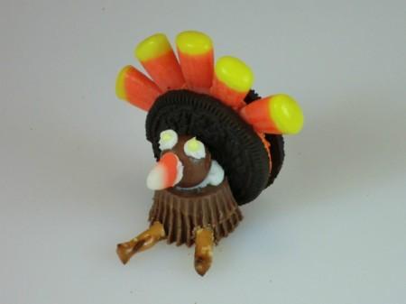 finished turkey