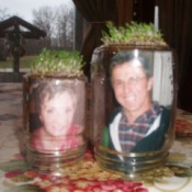 Chia spouting on bottoms up Mason jar, with photos inside.