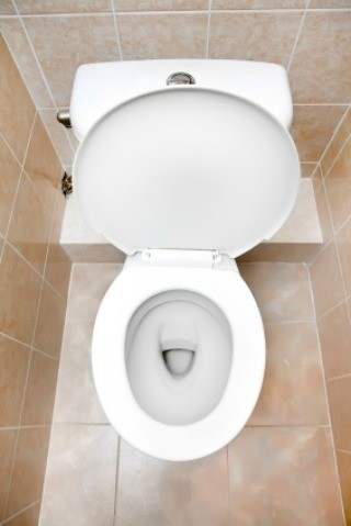 Magnetic Toilet Bowl Cleaner Reviews Thriftyfun