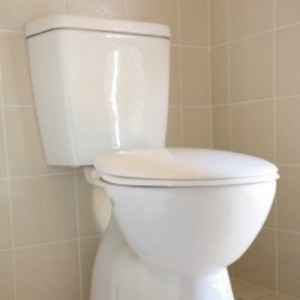 Photo of a toilet.