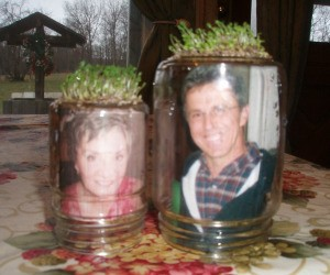 Homemade Chia Pet Ideas