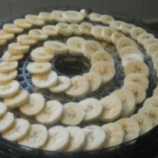 Banana slices on dehydrator tray.