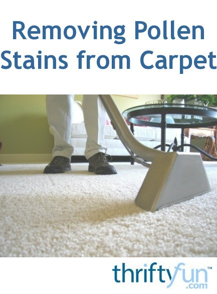 Removing Pollen Stains From Carpet Thriftyfun