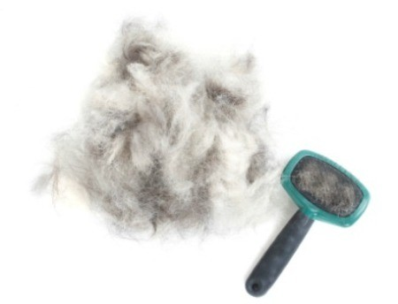 A dog's brush next to a pile of dog hair.