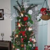 View of tree full length.