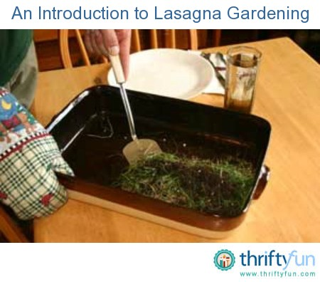An introduction to lasagna gardening thriftyfun - Lasagna gardening in containers ...