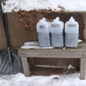 Starting Seeds with Winter Sowing