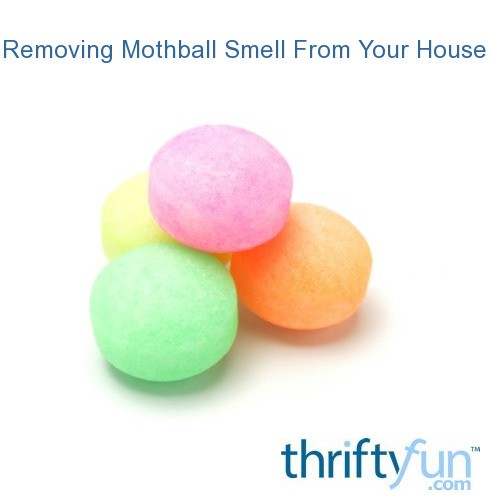 removing mothball smell from your house thriftyfun