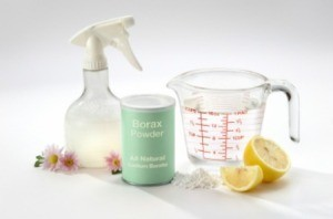 Homemade Citrus Cleaners