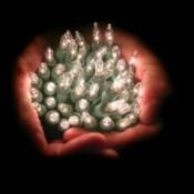 Christmas Lights in Hands