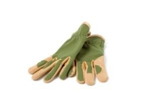 Buying Gardening Gloves