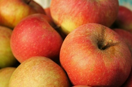 A photo of apples.