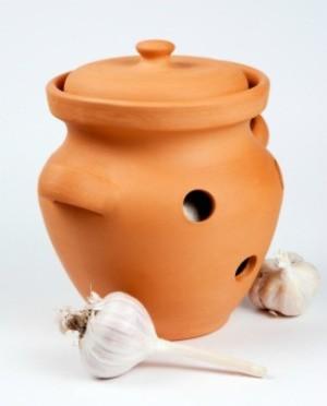 Storing Garlic
