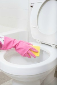 Cleaning Toilet With Ammonia