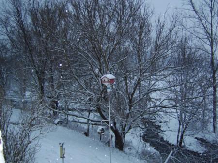 Snowy scene with birdhouse.