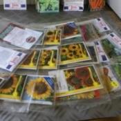 Organizing Seeds