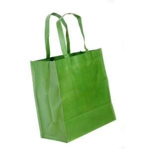 Green Reusable Shopping Bag