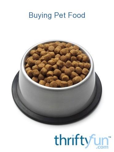 Best Wet Food For Elderly Cats