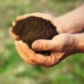 Testing Your Own Garden Soil