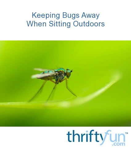 Keeping Bugs Away When Sitting Outdoors | ThriftyFun